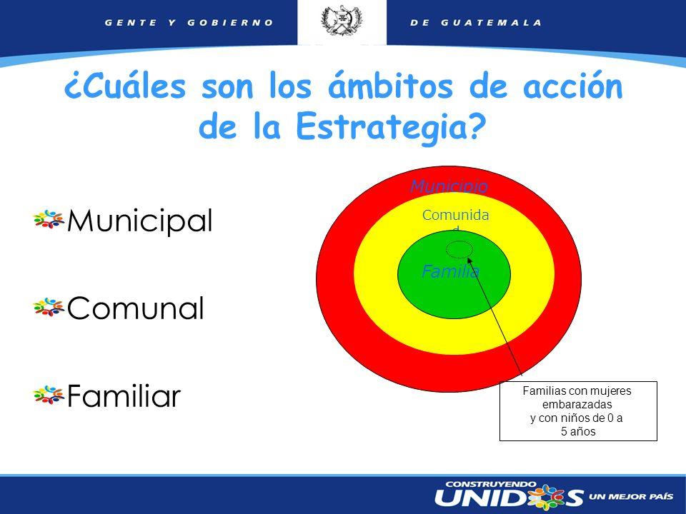 ¿Cuáles son los ámbitos de acción de la Estrategia