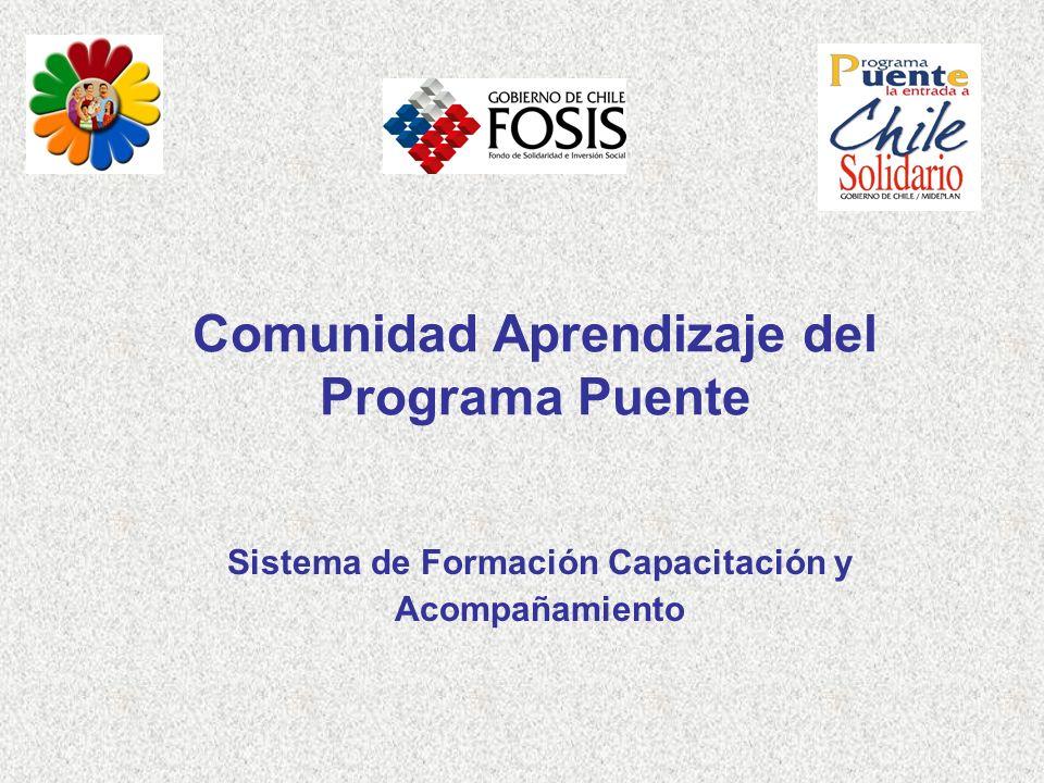 Comunidad Aprendizaje del Programa Puente