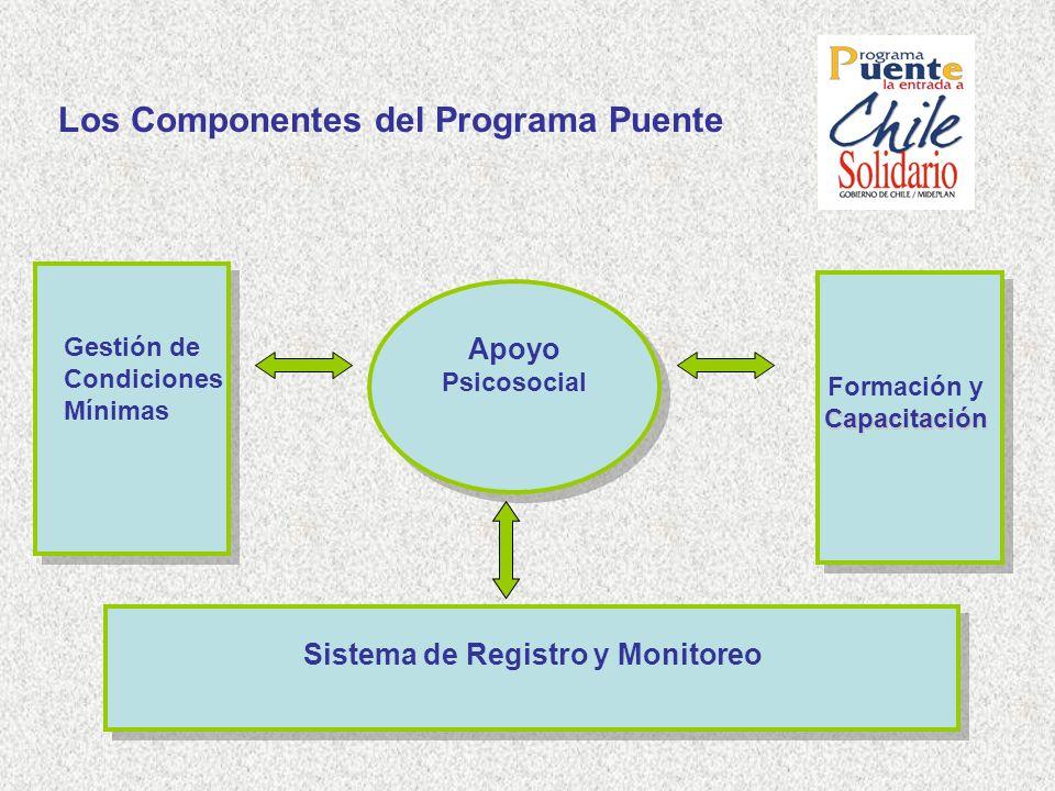 Los Componentes del Programa Puente