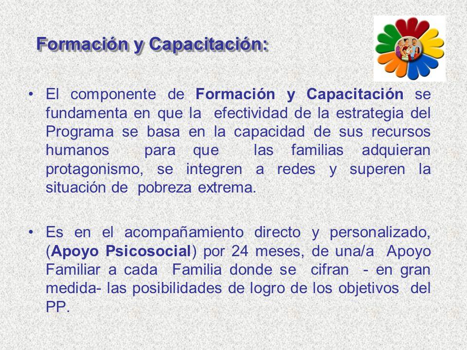 Formación y Capacitación: