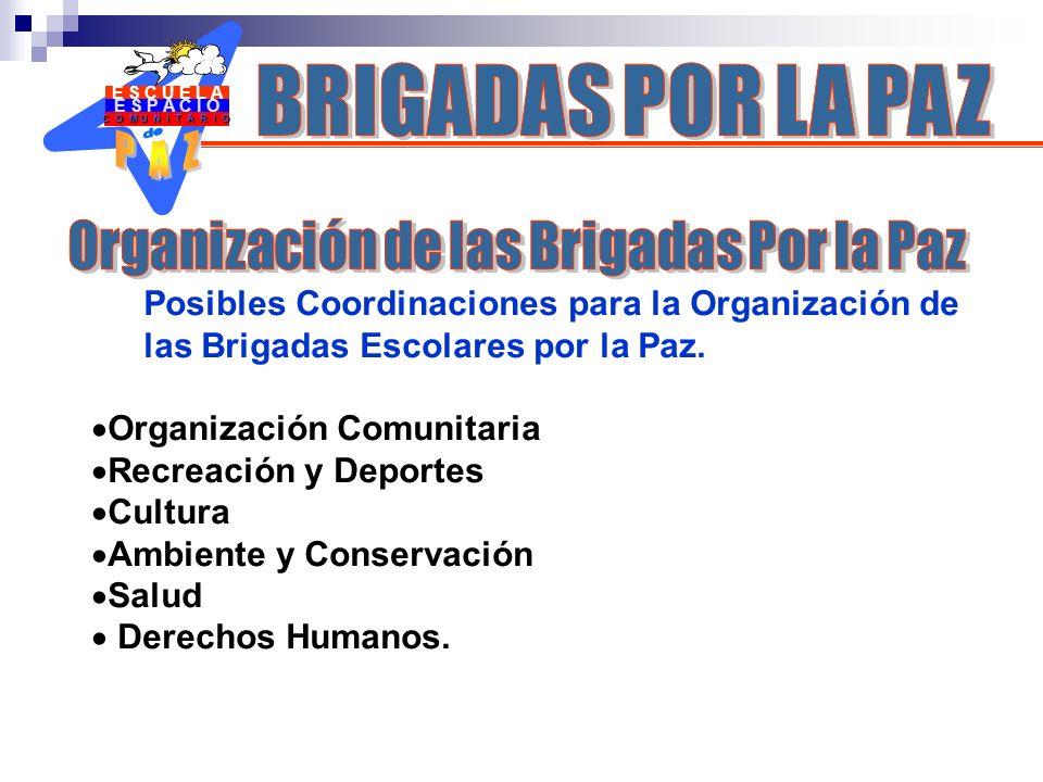 Organización de las Brigadas Por la Paz