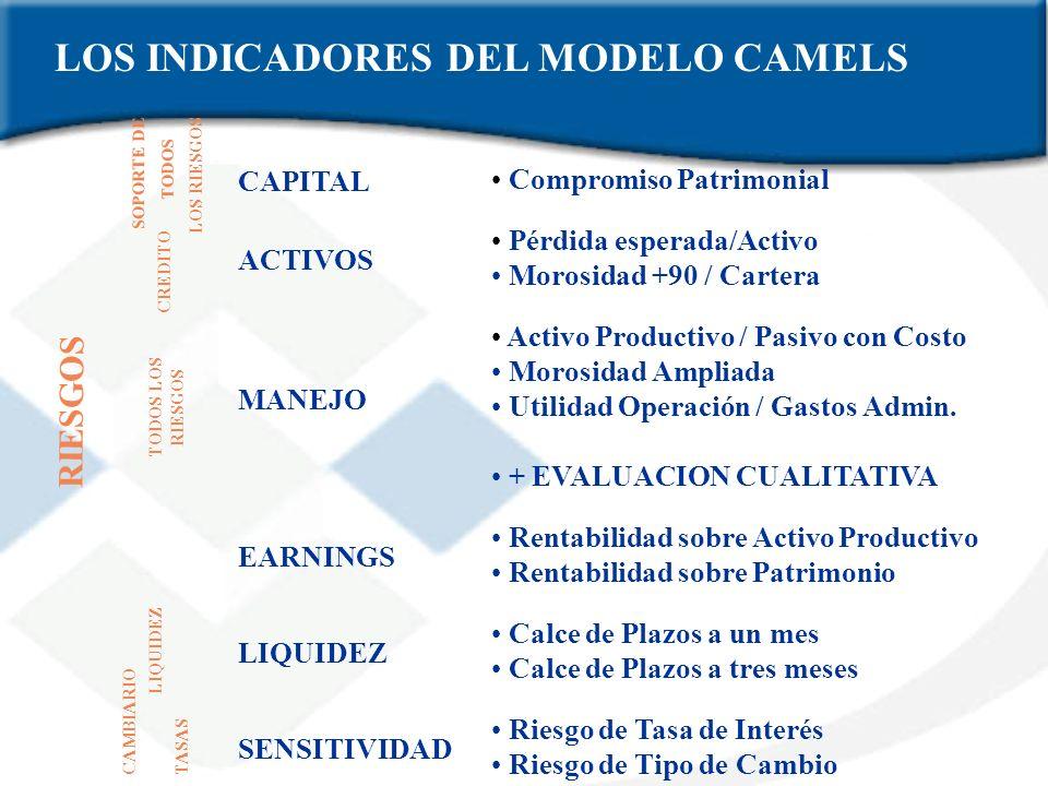 LOS INDICADORES DEL MODELO CAMELS
