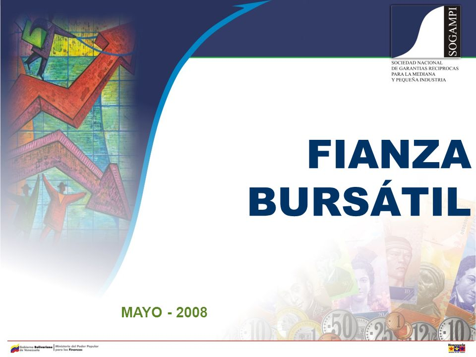 FIANZA BURSÁTIL MAYO - 2008