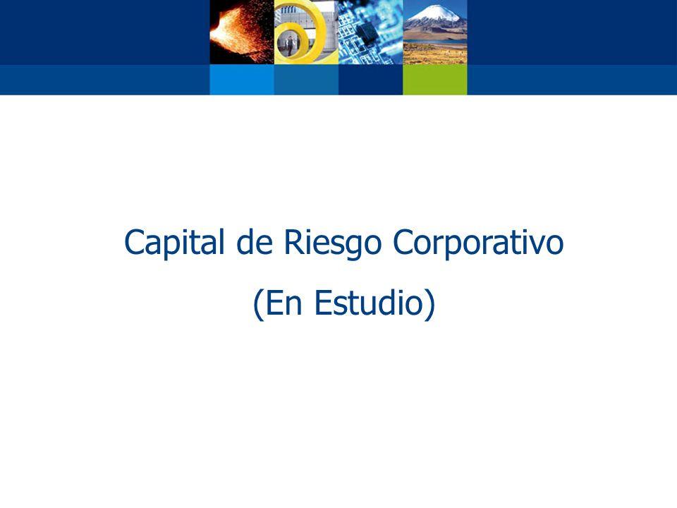 Capital de Riesgo Corporativo