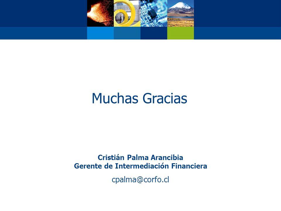 Cristián Palma Arancibia Gerente de Intermediación Financiera