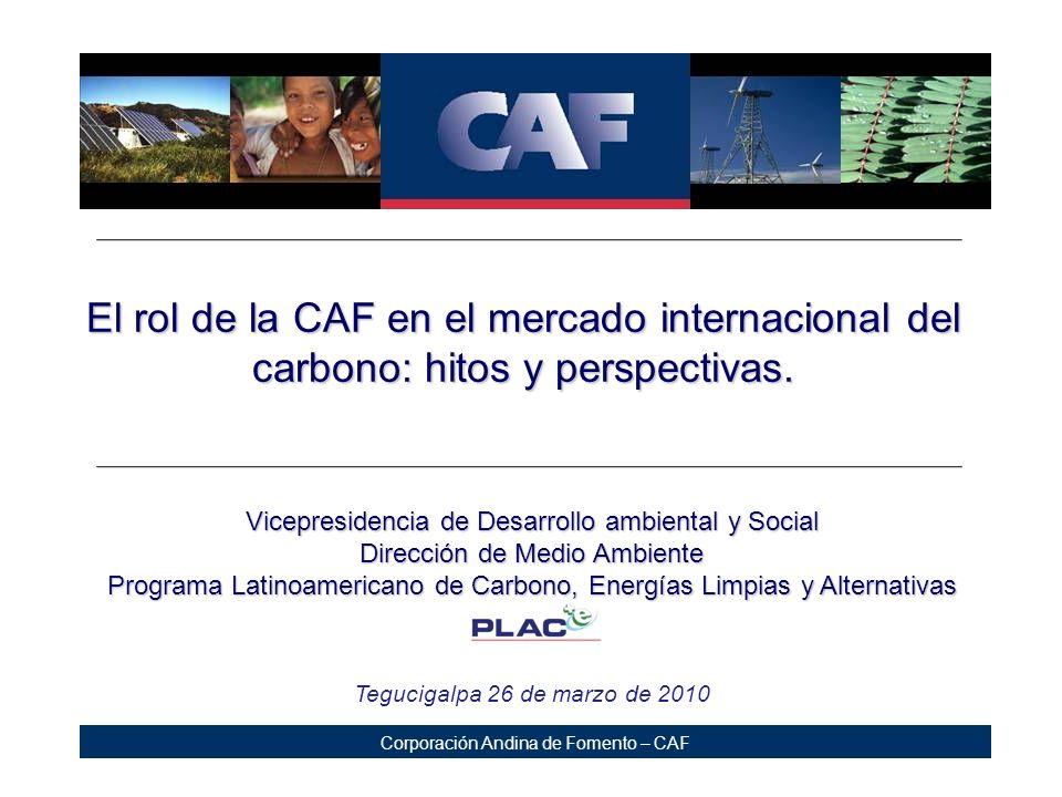 El rol de la CAF en el mercado internacional del carbono: hitos y perspectivas.