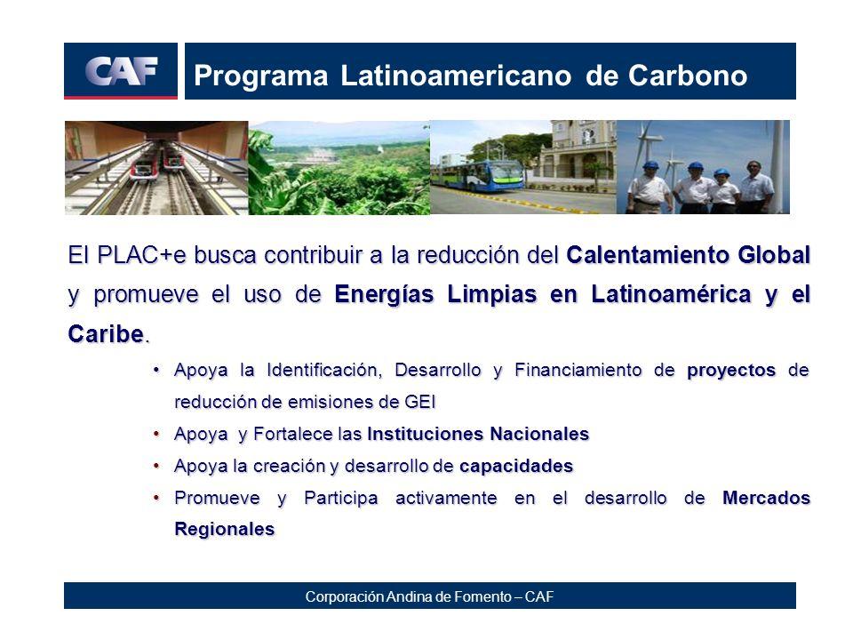 Programa Latinoamericano de Carbono