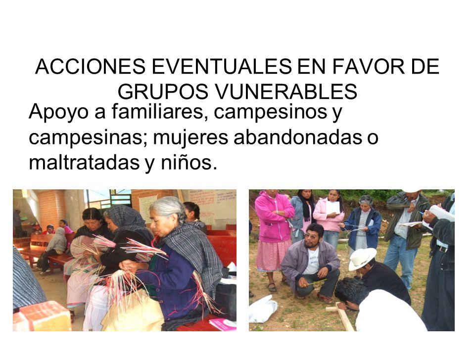 ACCIONES EVENTUALES EN FAVOR DE GRUPOS VUNERABLES
