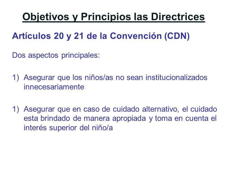Objetivos y Principios las Directrices