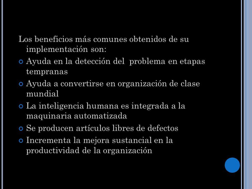 Los beneficios más comunes obtenidos de su implementación son: