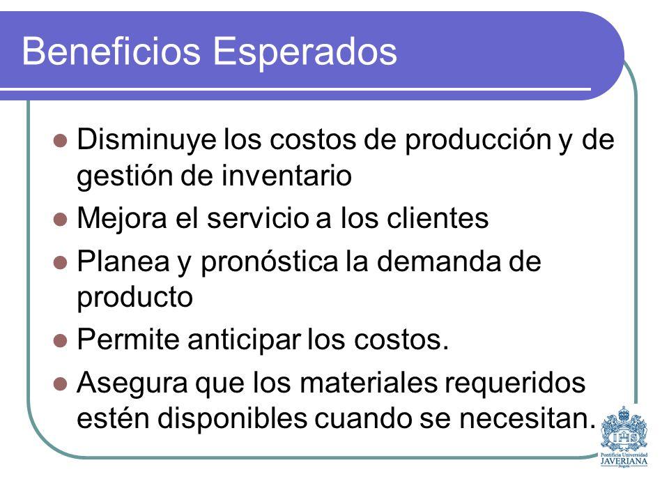 Beneficios Esperados Disminuye los costos de producción y de gestión de inventario. Mejora el servicio a los clientes.