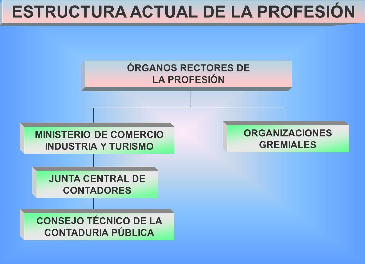 ESTRUCTURA ACTUAL DE LA PROFESIÓN