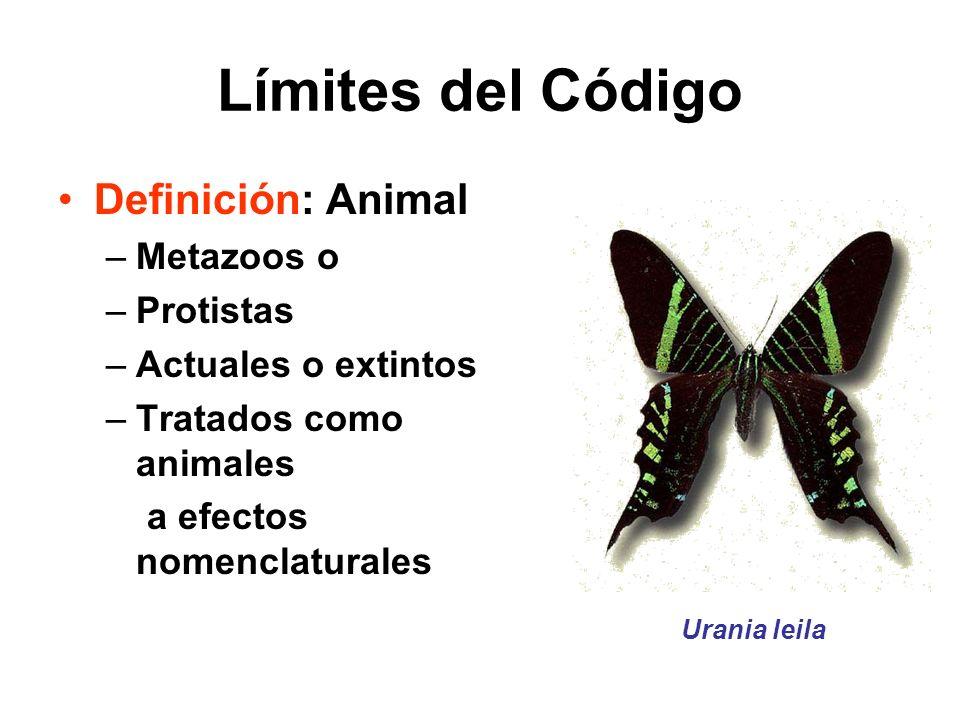 Límites del Código Definición: Animal Metazoos o Protistas