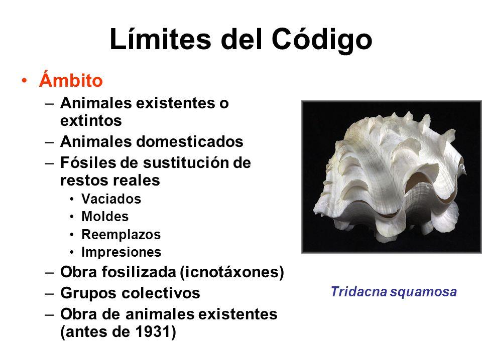 Límites del Código Ámbito Animales existentes o extintos
