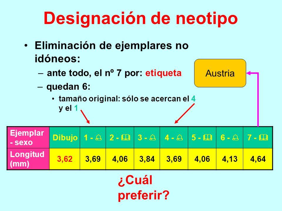 Designación de neotipo