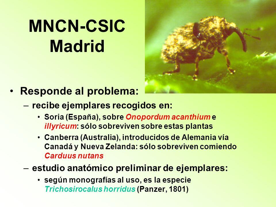 MNCN-CSIC Madrid Responde al problema: recibe ejemplares recogidos en: