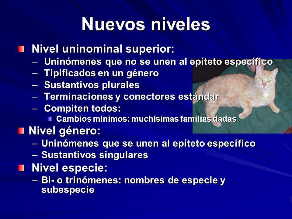Nuevos niveles Nivel uninominal superior: Nivel género: Nivel especie: