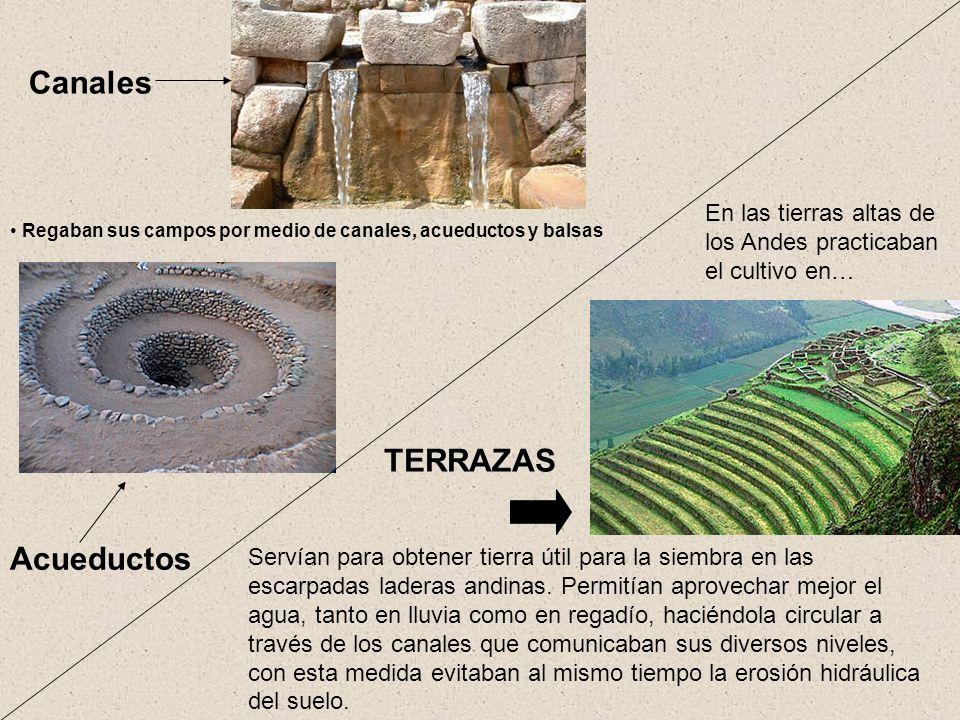 La civilizaci n m s grandiosa y poderosa de am rica ppt for Terrazas 14 vicuna