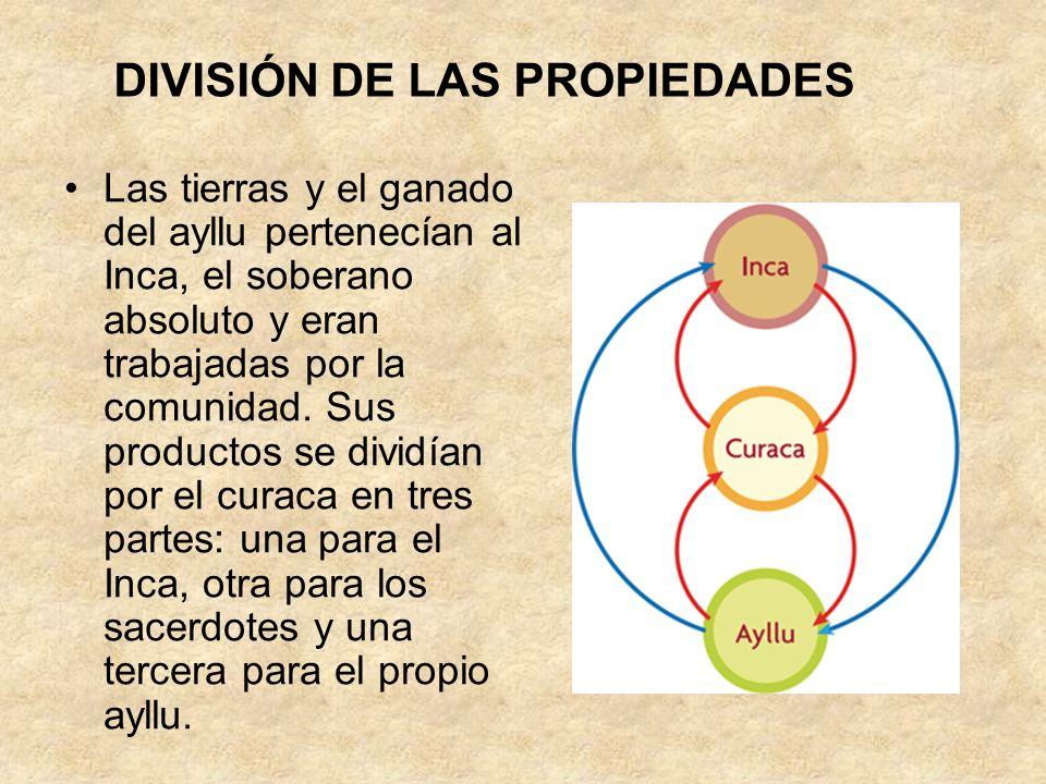 DIVISIÓN DE LAS PROPIEDADES