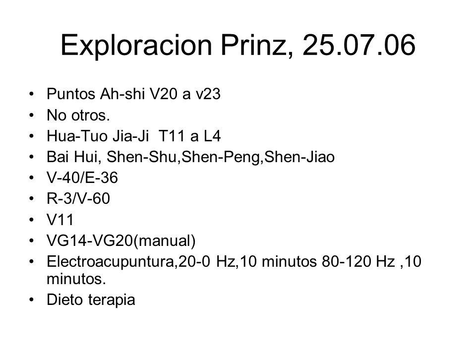 Exploracion Prinz, 25.07.06 Puntos Ah-shi V20 a v23 No otros.