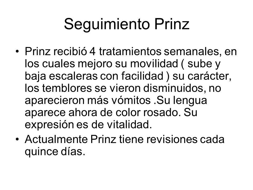 Seguimiento Prinz