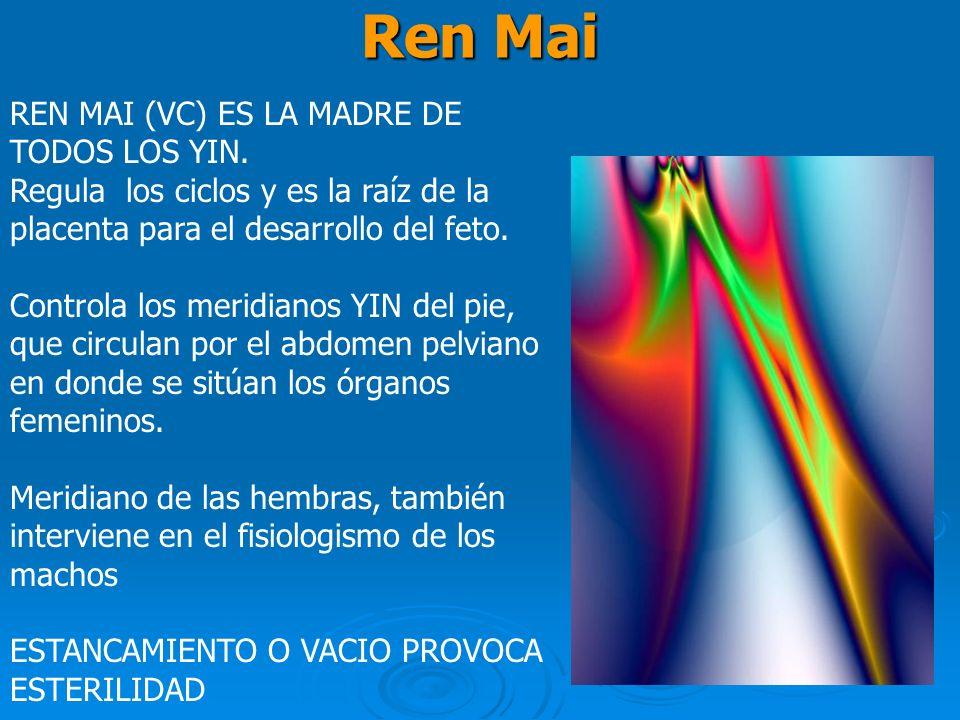 Ren Mai REN MAI (VC) ES LA MADRE DE TODOS LOS YIN.