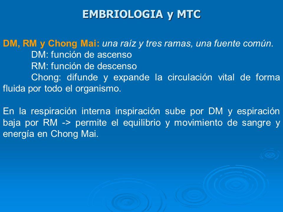 EMBRIOLOGIA y MTC DM, RM y Chong Mai: una raíz y tres ramas, una fuente común. DM: función de ascenso.
