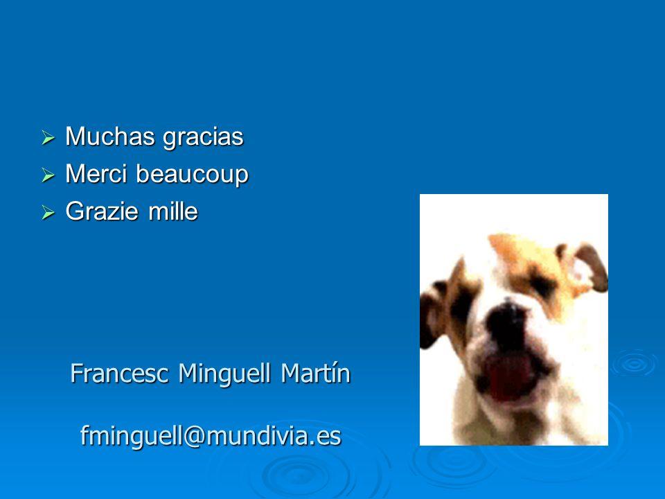 Francesc Minguell Martín fminguell@mundivia.es