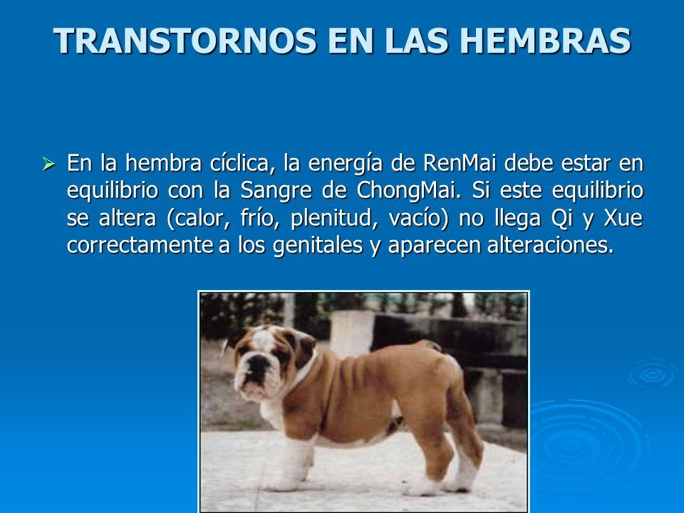 TRANSTORNOS EN LAS HEMBRAS