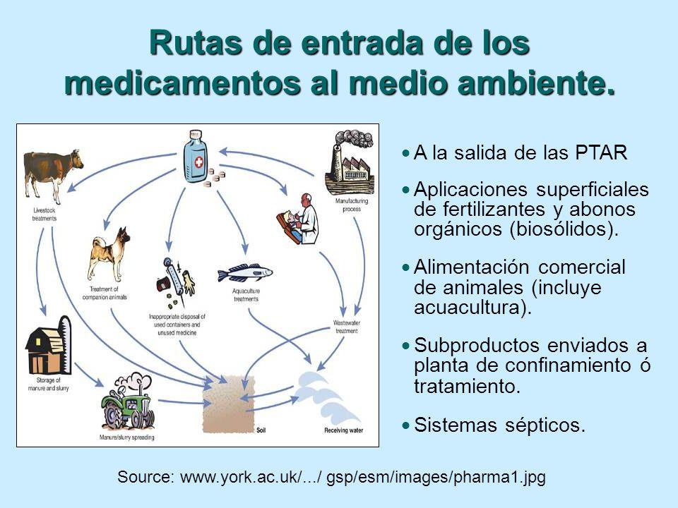 Rutas de entrada de los medicamentos al medio ambiente.