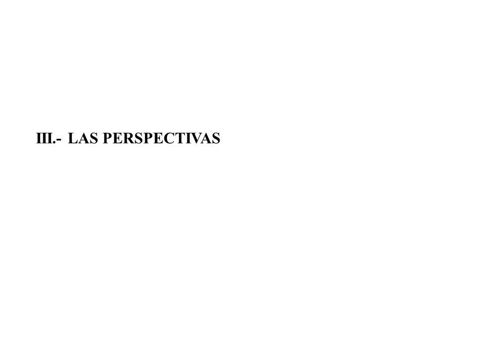 III.- LAS PERSPECTIVAS