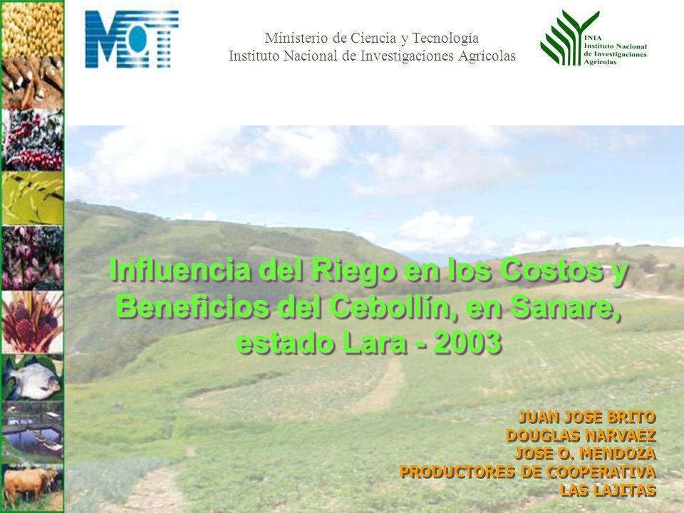 Influencia del Riego en los Costos y Beneficios del Cebollín, en Sanare, estado Lara - 2003