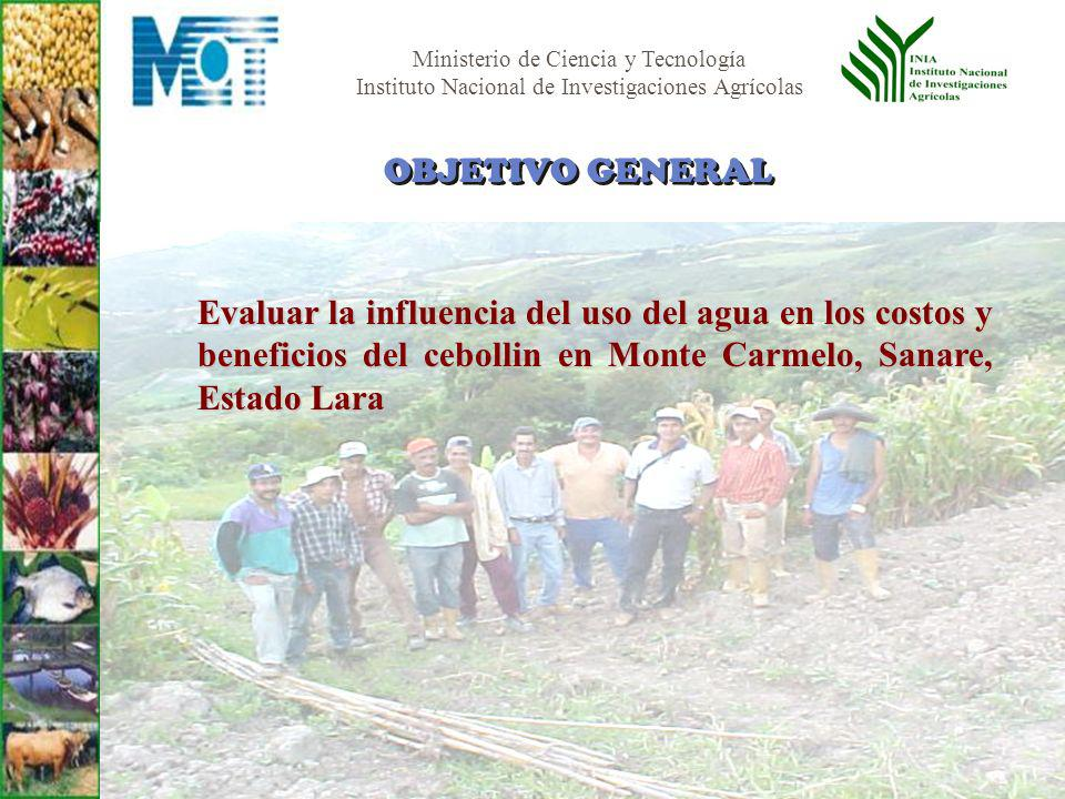OBJETIVO GENERAL Evaluar la influencia del uso del agua en los costos y beneficios del cebollin en Monte Carmelo, Sanare, Estado Lara.