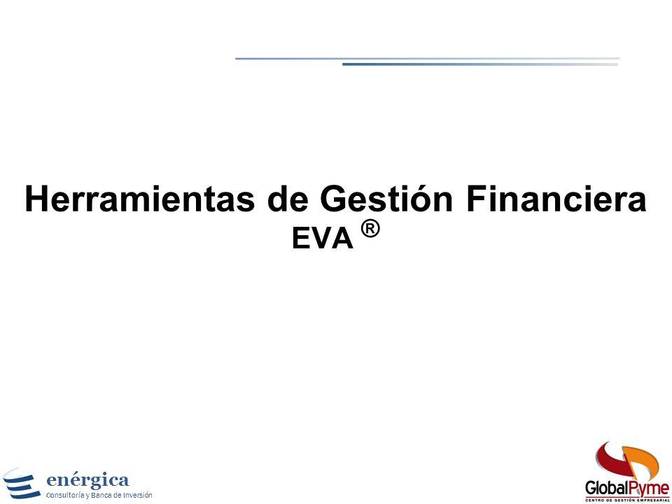 Herramientas de Gestión Financiera EVA ®