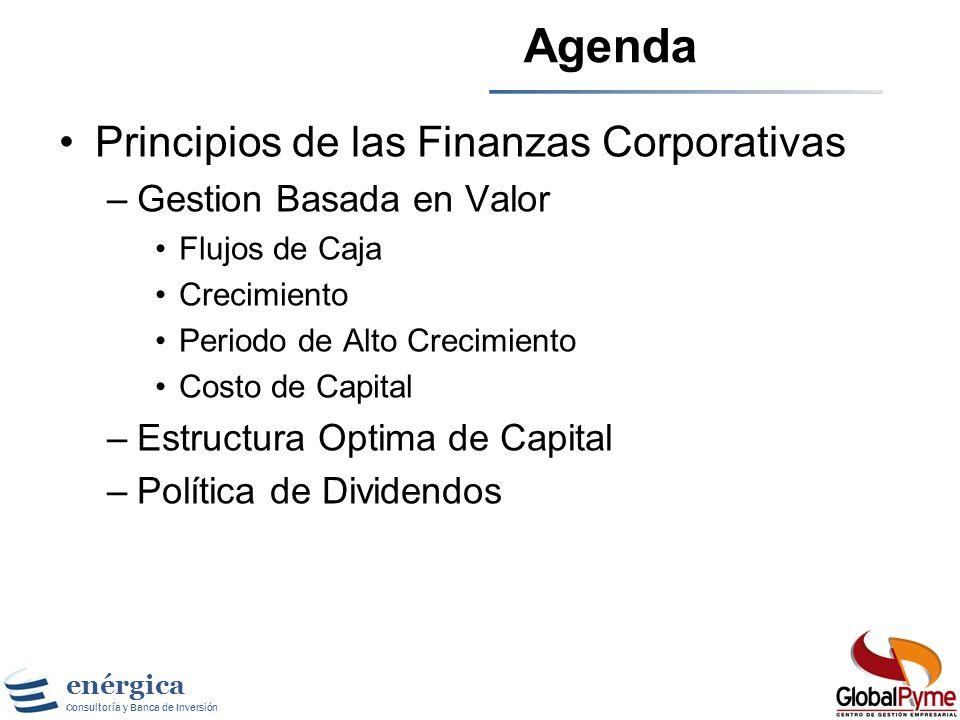 Agenda Principios de las Finanzas Corporativas Gestion Basada en Valor