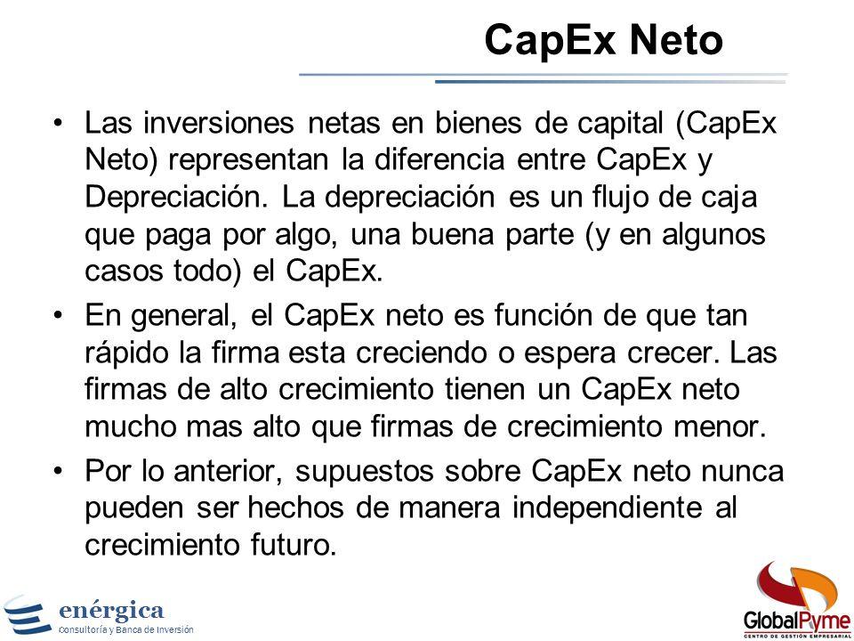 CapEx Neto