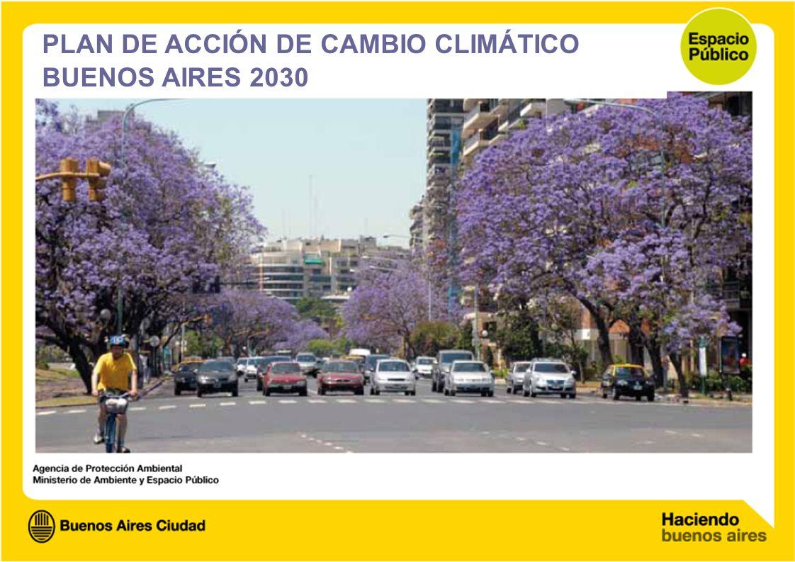 PLAN DE ACCIÓN DE CAMBIO CLIMÁTICO BUENOS AIRES 2030