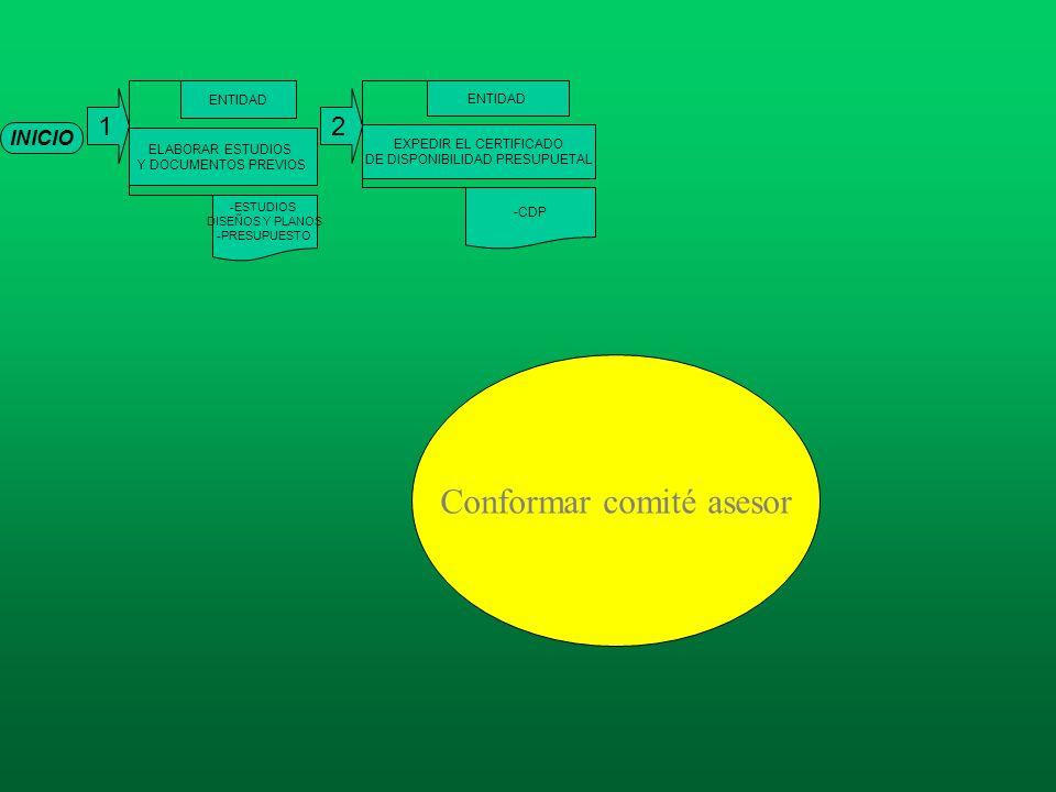 Conformar comité asesor