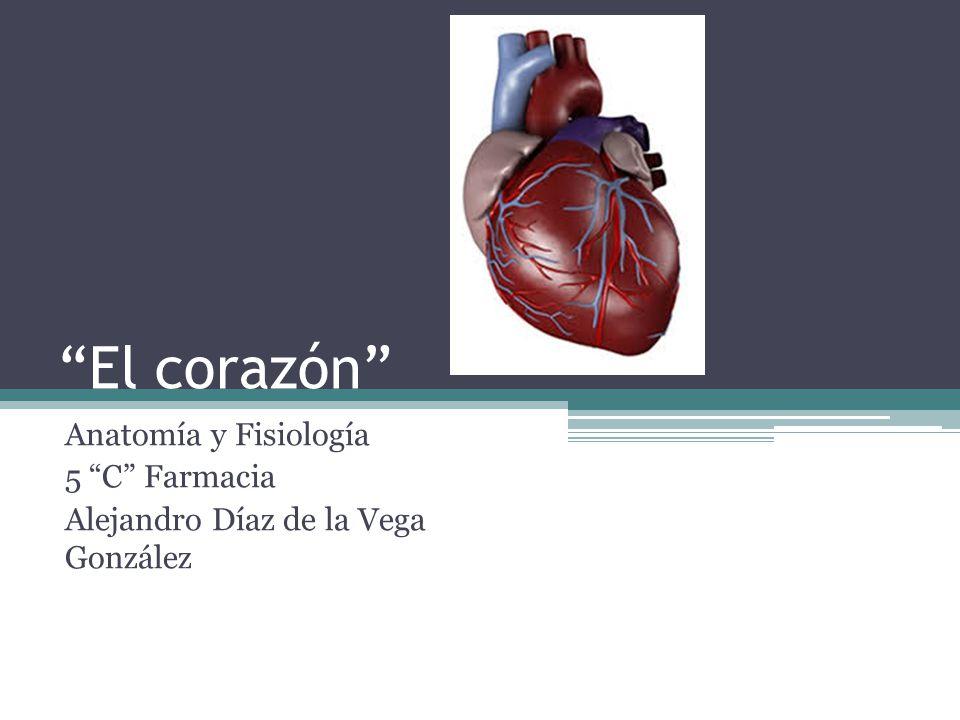 """El corazón"""" Anatomía y Fisiología 5 """"C"""" Farmacia - ppt video online ..."""