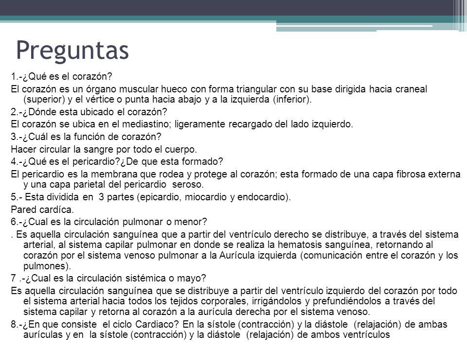 Excepcional Hesi A2 Preguntas De Práctica De Anatomía Y Fisiología ...