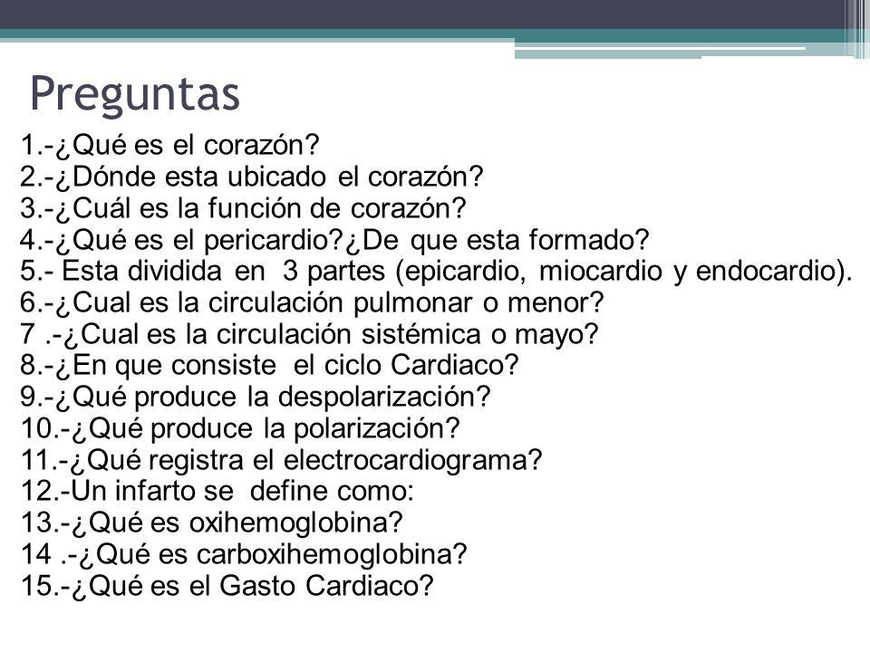 Vistoso Anatomía Y Fisiología Humana Preguntas De Práctica Adorno ...