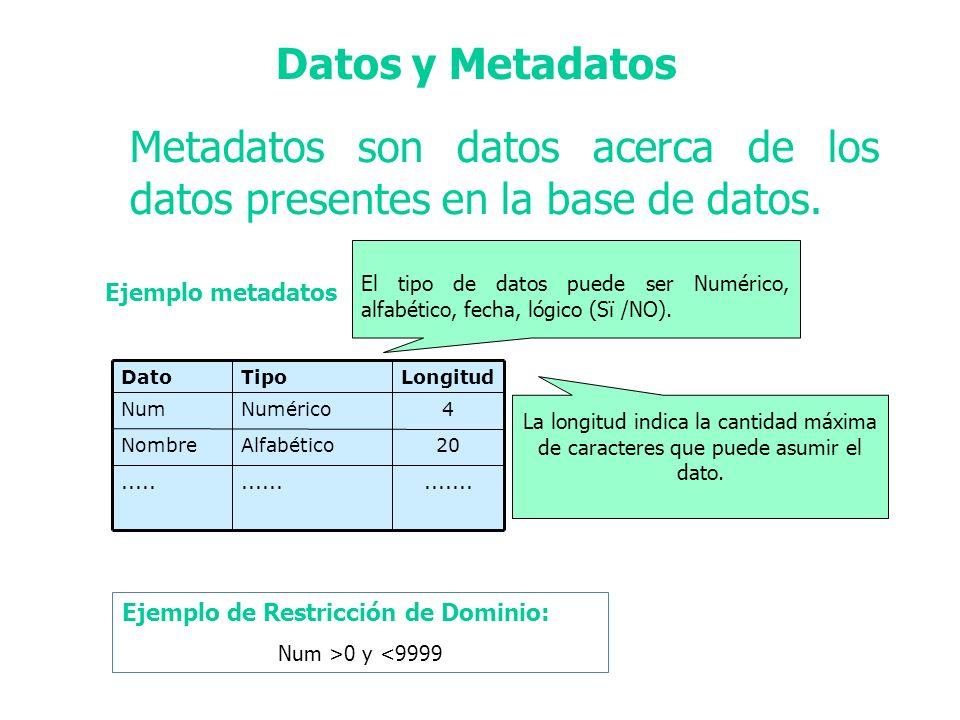 Metadatos son datos acerca de los datos presentes en la base de datos.