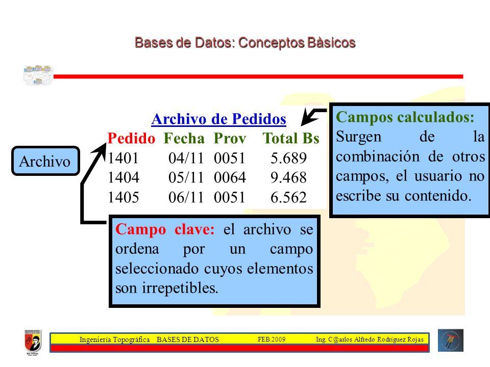 Bases de Datos: Conceptos Bàsicos