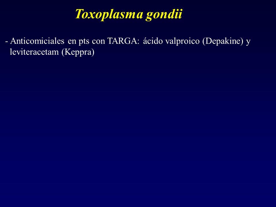Toxoplasma gondii - Anticomiciales en pts con TARGA: ácido valproico (Depakine) y.