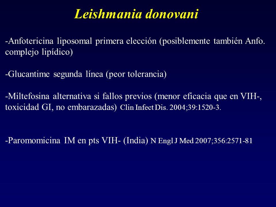 Leishmania donovani -Anfotericina liposomal primera elección (posiblemente también Anfo. complejo lipídico)