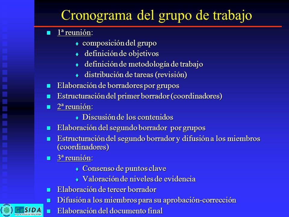 Cronograma del grupo de trabajo