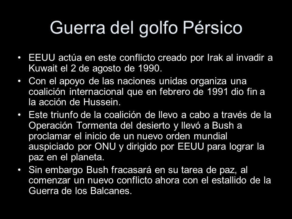 Guerra del golfo Pérsico