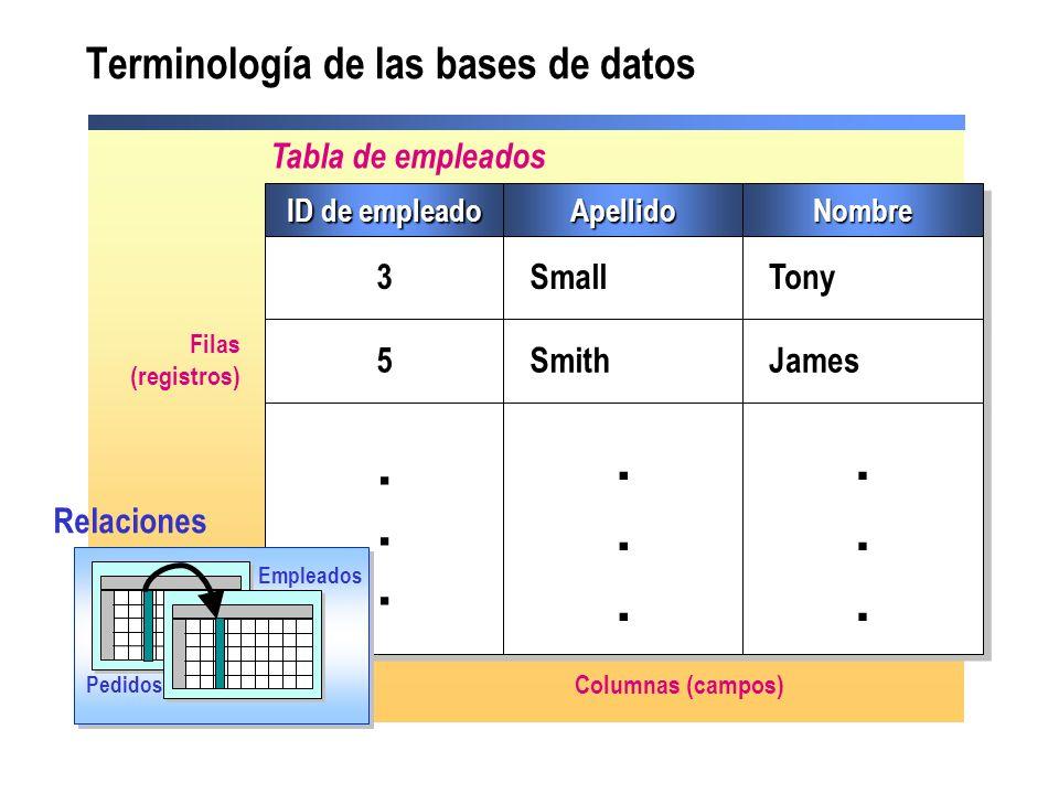 Terminología de las bases de datos
