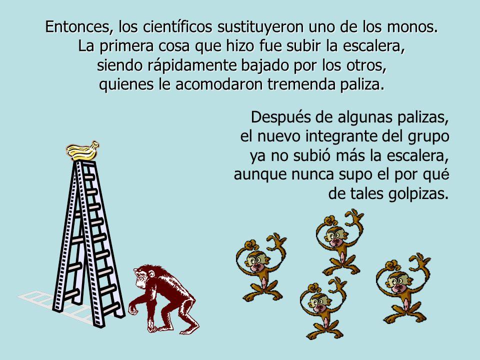 Entonces, los científicos sustituyeron uno de los monos.