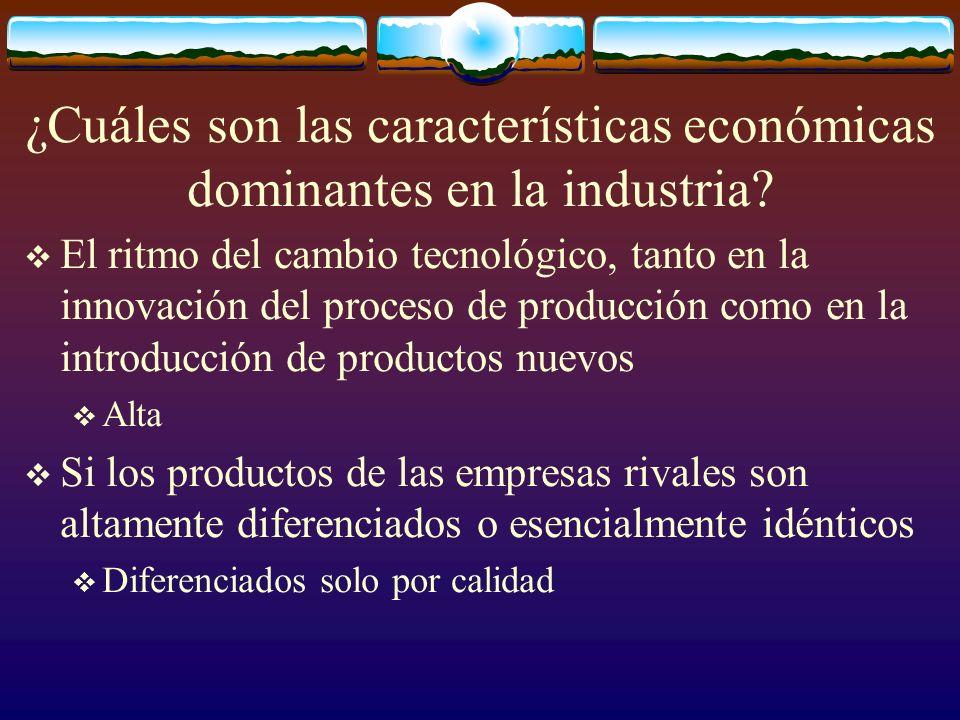 ¿Cuáles son las características económicas dominantes en la industria